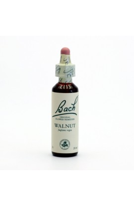 DR. BACH, ESENCE WALNUT, 20 ML