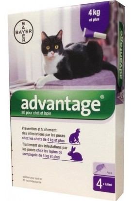 BAYER, Advantage 80 10% for cats over 4 kg 4x0.8ml